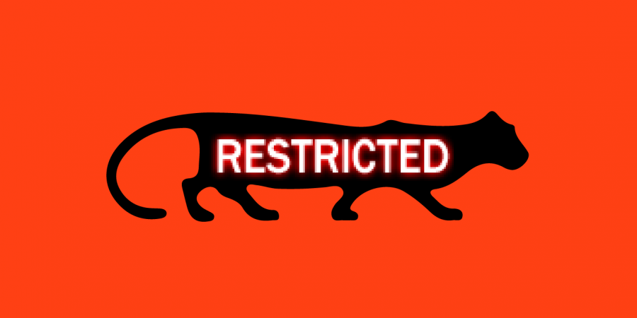 t=restricted cougar